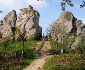 1 Day Tours from Truskavets