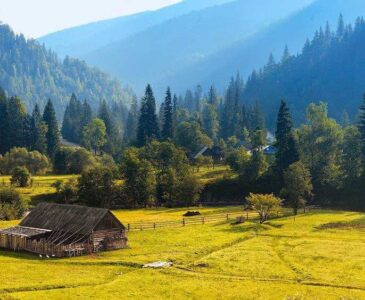 Summer Vacation in the Carpathians