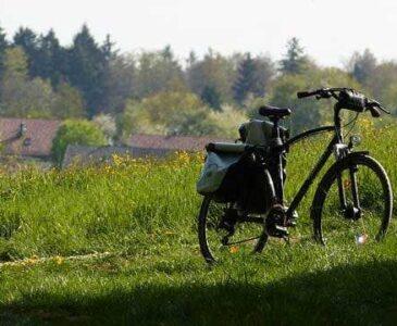 Biking for weight loss